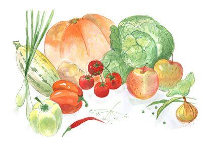 Veganismus Mythen