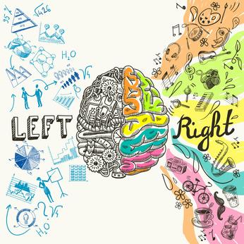 Rechte und linke Gehirnhälfte