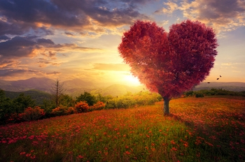 Liebe, Landschaft