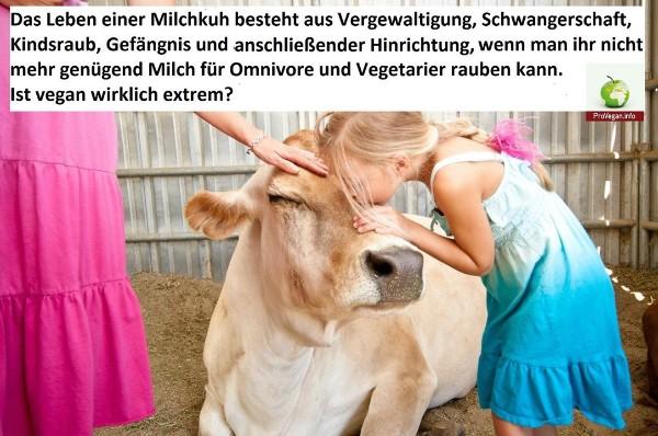 Ist vegan extrem?