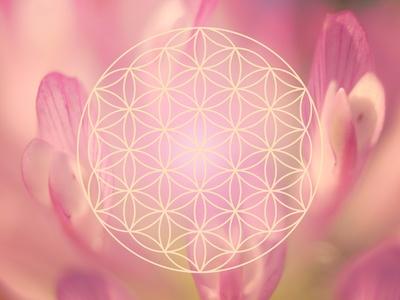 Die Blume Des Lebens Energie Durch Die Heilige Geometrie