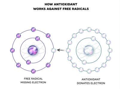 Antioxidantien und freie Radikale