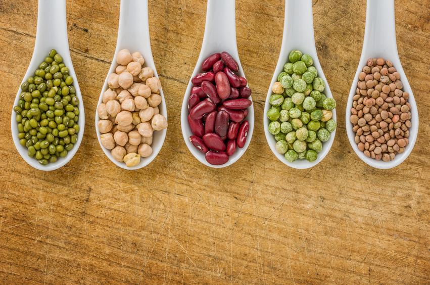 Hülsenfrüchte sind reich an pflanzlichen Proteinen