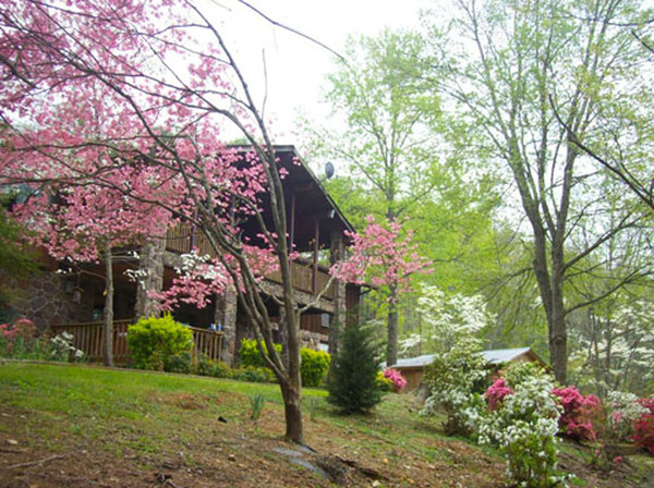 Spacious: private: Near Chattanooga
