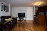 1306 francisco dr basement living room 2