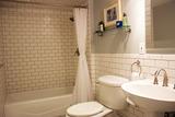 1306 francisco dr basement bathroom 2