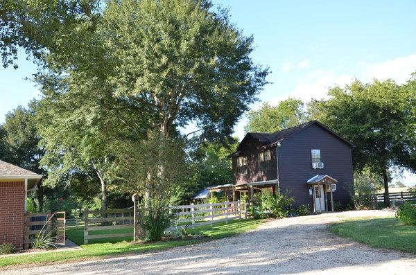 Treehouse Apt