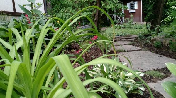 Cottage Garden Hideaway