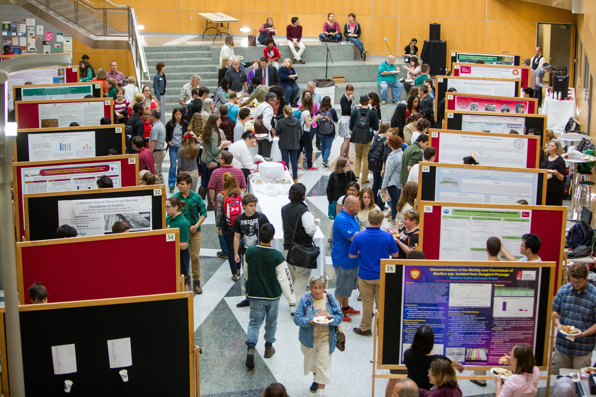 1443009723 2015 ohio wesleyan summer science research symposium. %28photo by mark schmitter%29