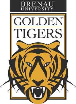 Entire tiger