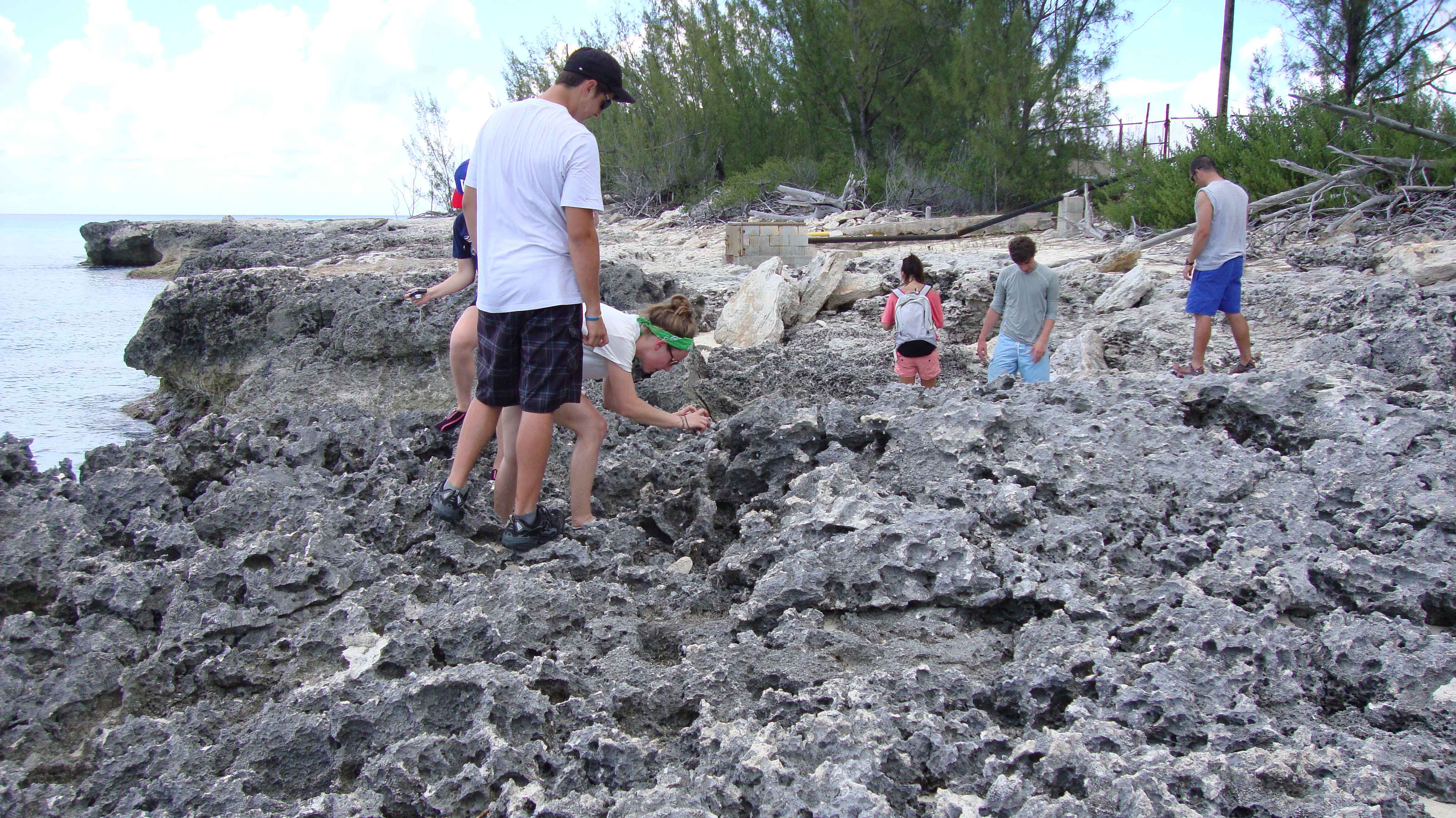 Exploring a fossil coral reef