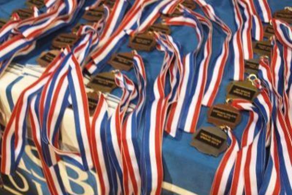 1454119071 awards hsa