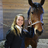 1454356315 newburg horse stall