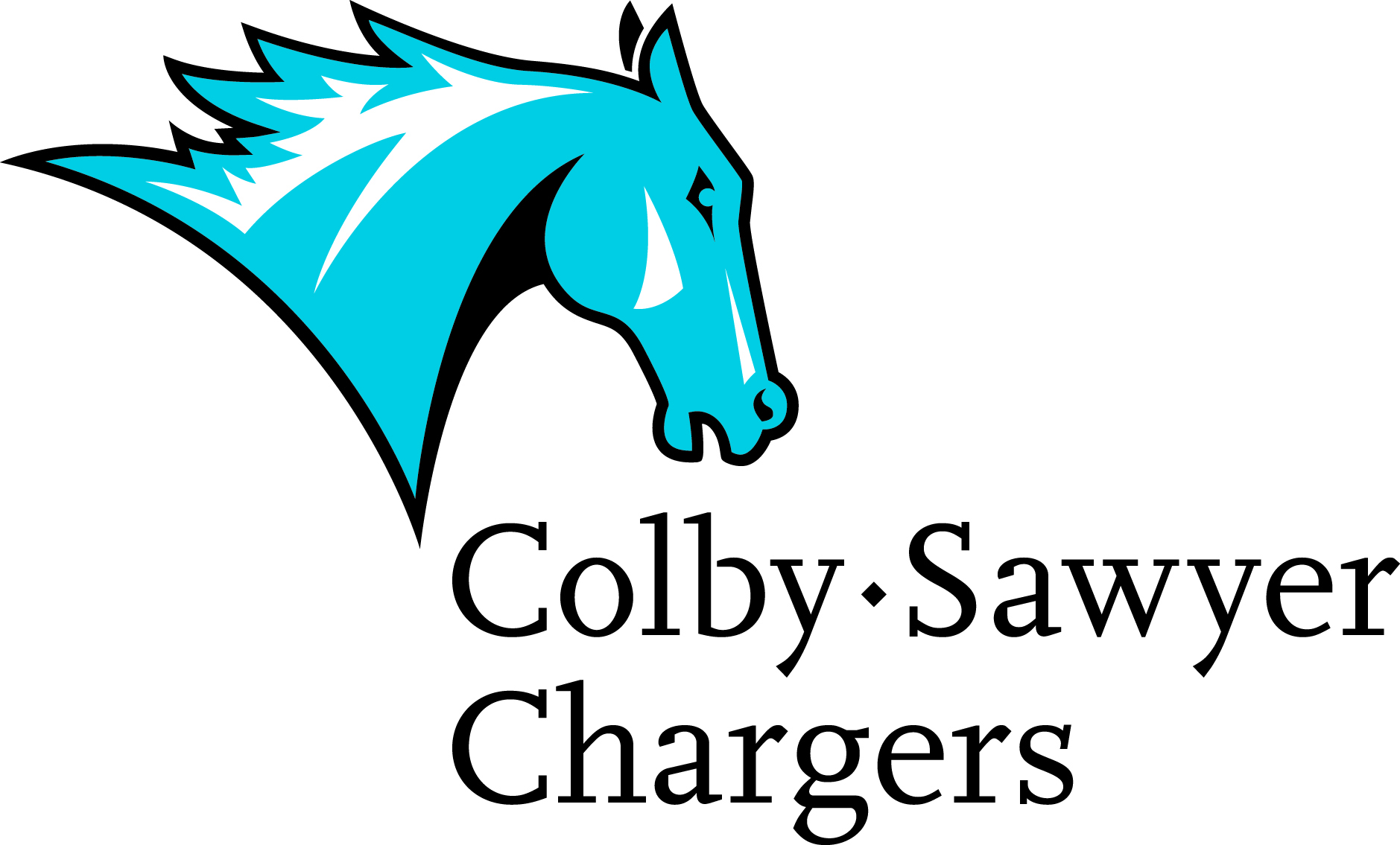 1454697891 csc charger cs chargers