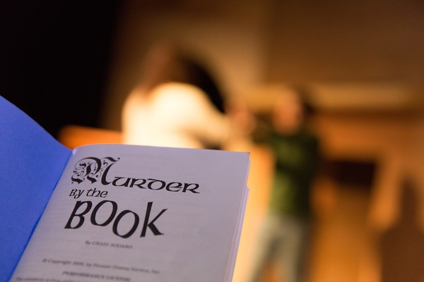 1455301109 murder by the book
