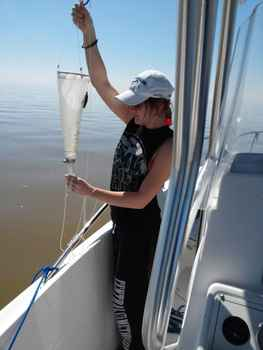1459800816 pulling in the plankton net