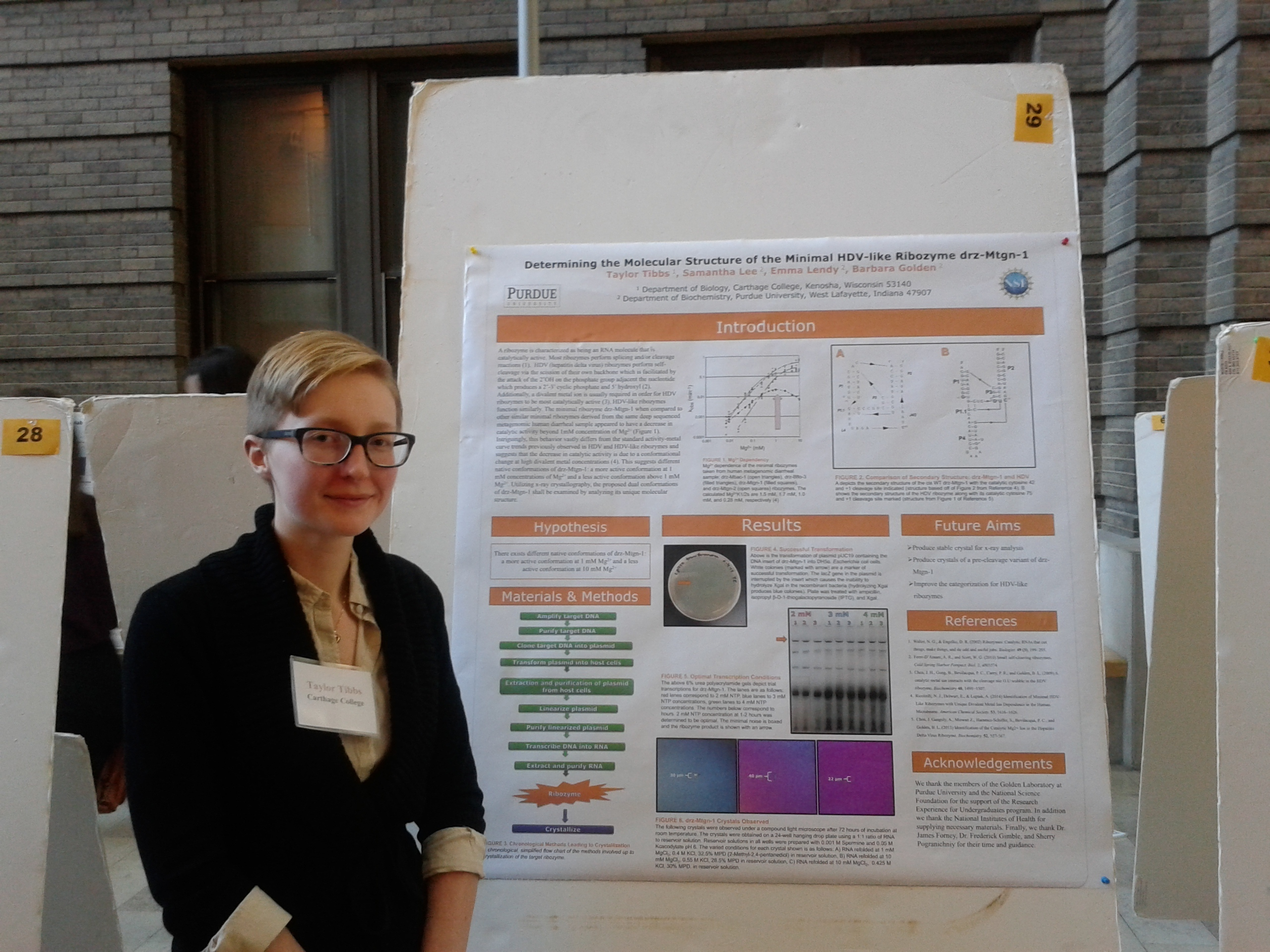 1460573965 taylor tibbs presenting a research poster at a