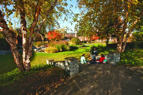 Lvc peace garden