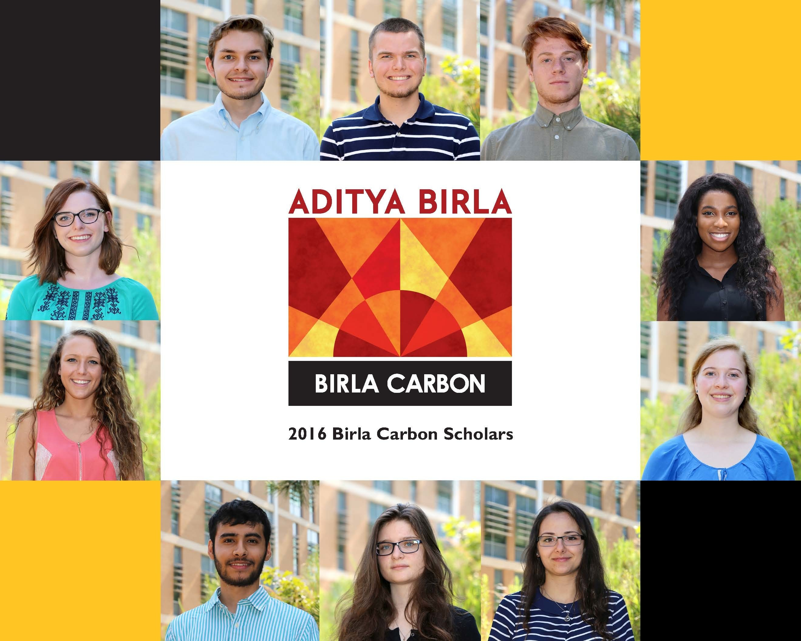 2016 birla carbon collage v2