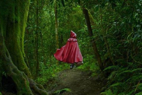 Dean college presents into the woods