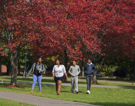 Fall campus 1