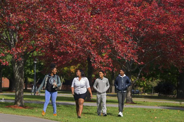 Fall campus 1