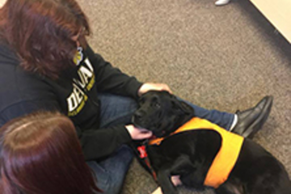 2017 04 17 volunteers interact with therapy dogs