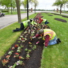 20170523 entrance flower planting 0874
