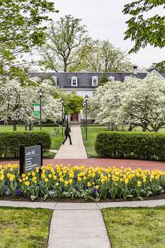Delaware valley university campus spring
