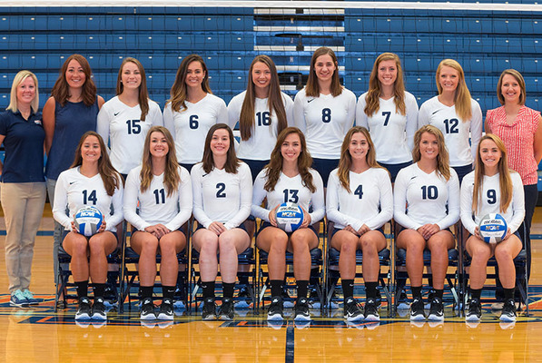 Volleyball2017 web