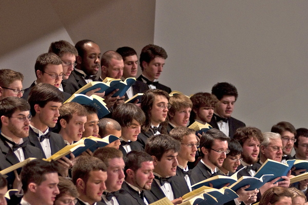 Crane chorus