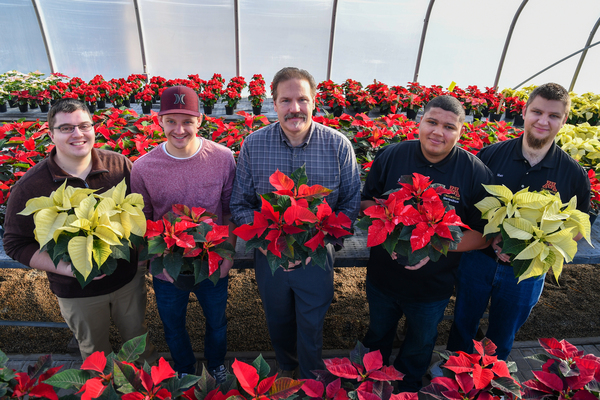 20171128 hort poinsettias d500 1911