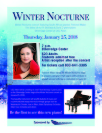 Winter nocturne 2018