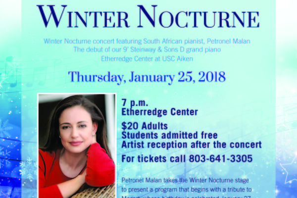 Winter nocturne 2018