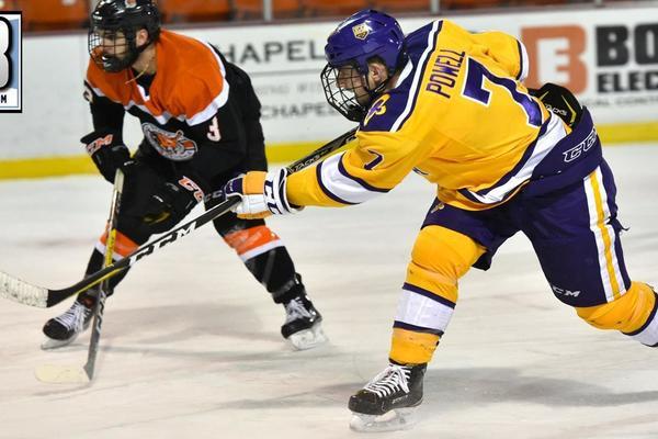Powell d3hockey