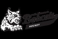 Psc atl bobcat hockey 1ck horiz 19fu2zv 1024x684