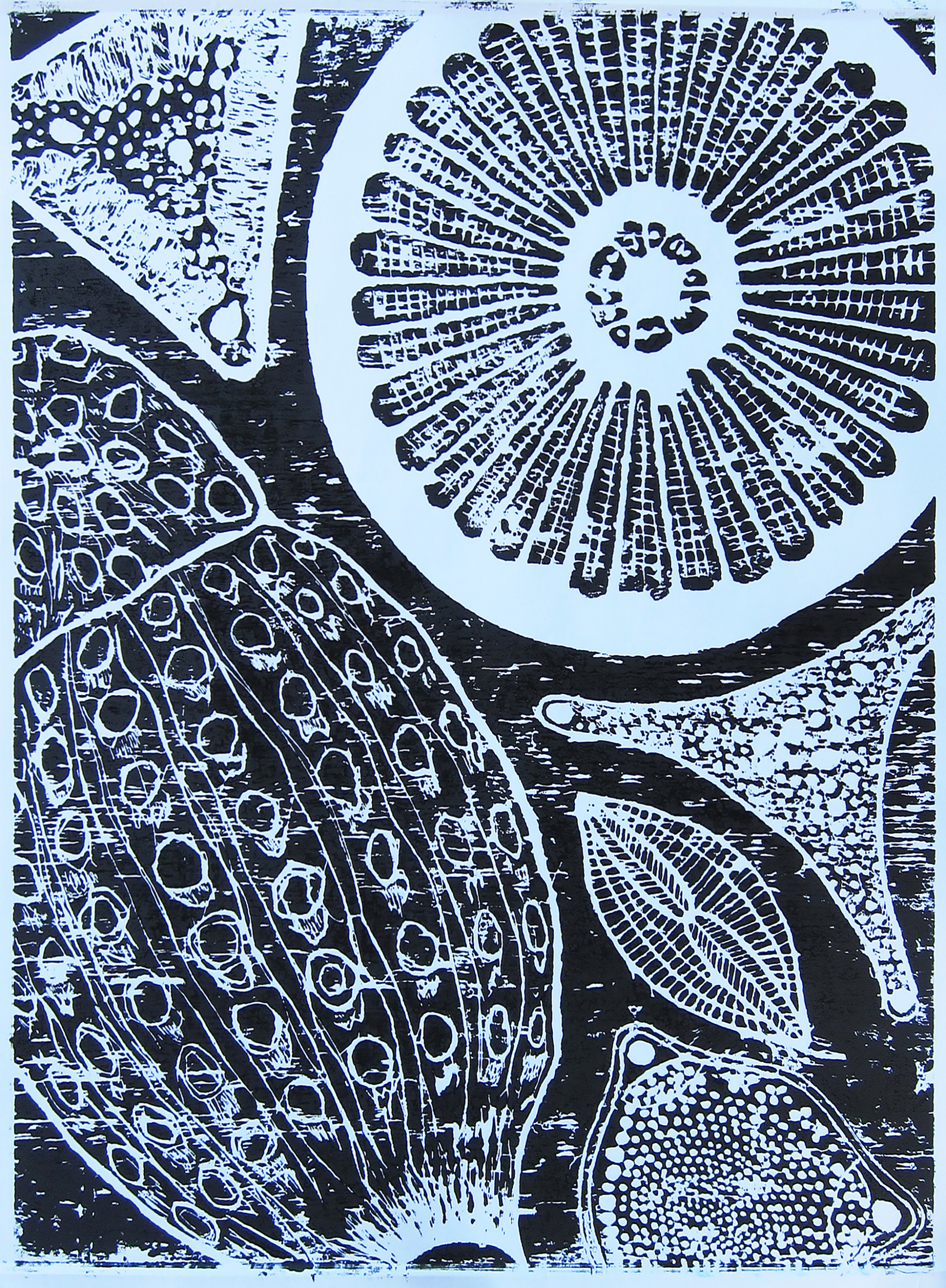 Diatoms wood carving print