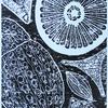 Diatoms wood carving print