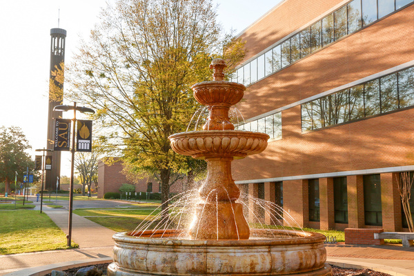 Sau rankin college of business
