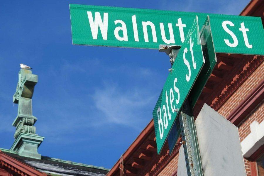 180124 lewiston tree street signs 2112 copy 900x600