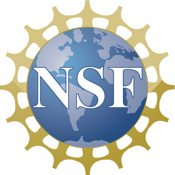 Medium nsf logo