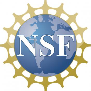Medium nsf logo