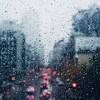 02 rachel metcalf street lights and rain
