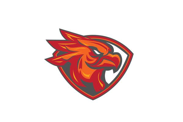 Asa phoenix