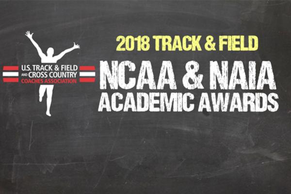 2018 ncaa naia academic awards web