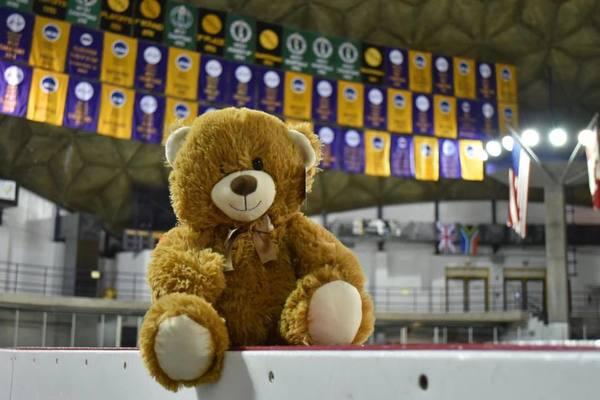 Teddybeartoss1