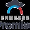 Tnpromise logo02e757ac3323.tmb custom