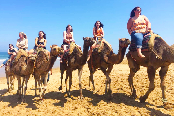 Study abroad camels