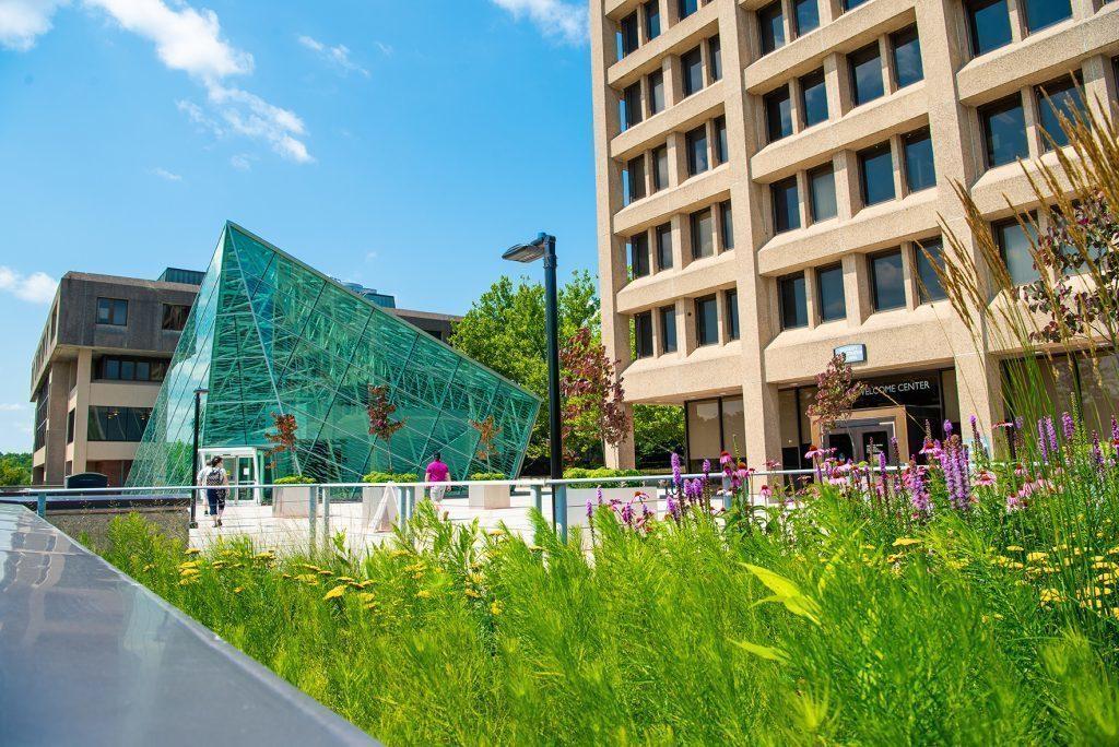 20180711 atrium plaza garden 160 1024x684