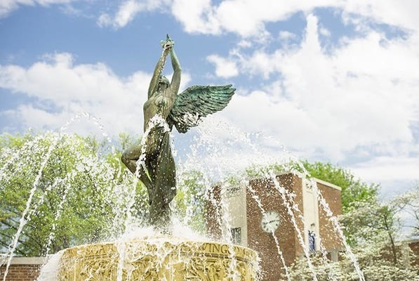 Fountain spring